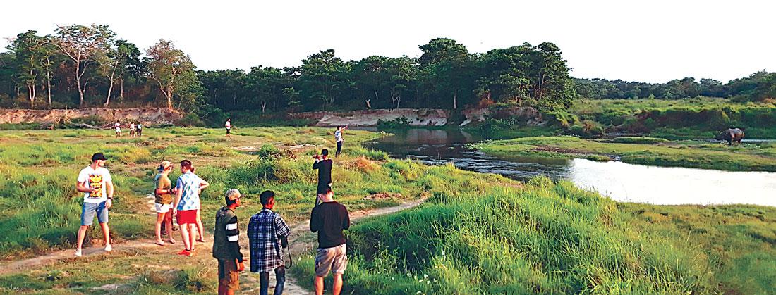 चरादेखि दुर्लभ अर्नाबारे अध्ययन गर्न विदेशी पर्यटकको रोजाईमा कोशीटप्पु