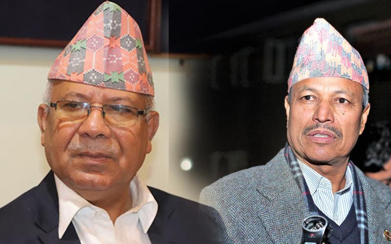 संगठित गर्दै खनाल–नेपाल समूह