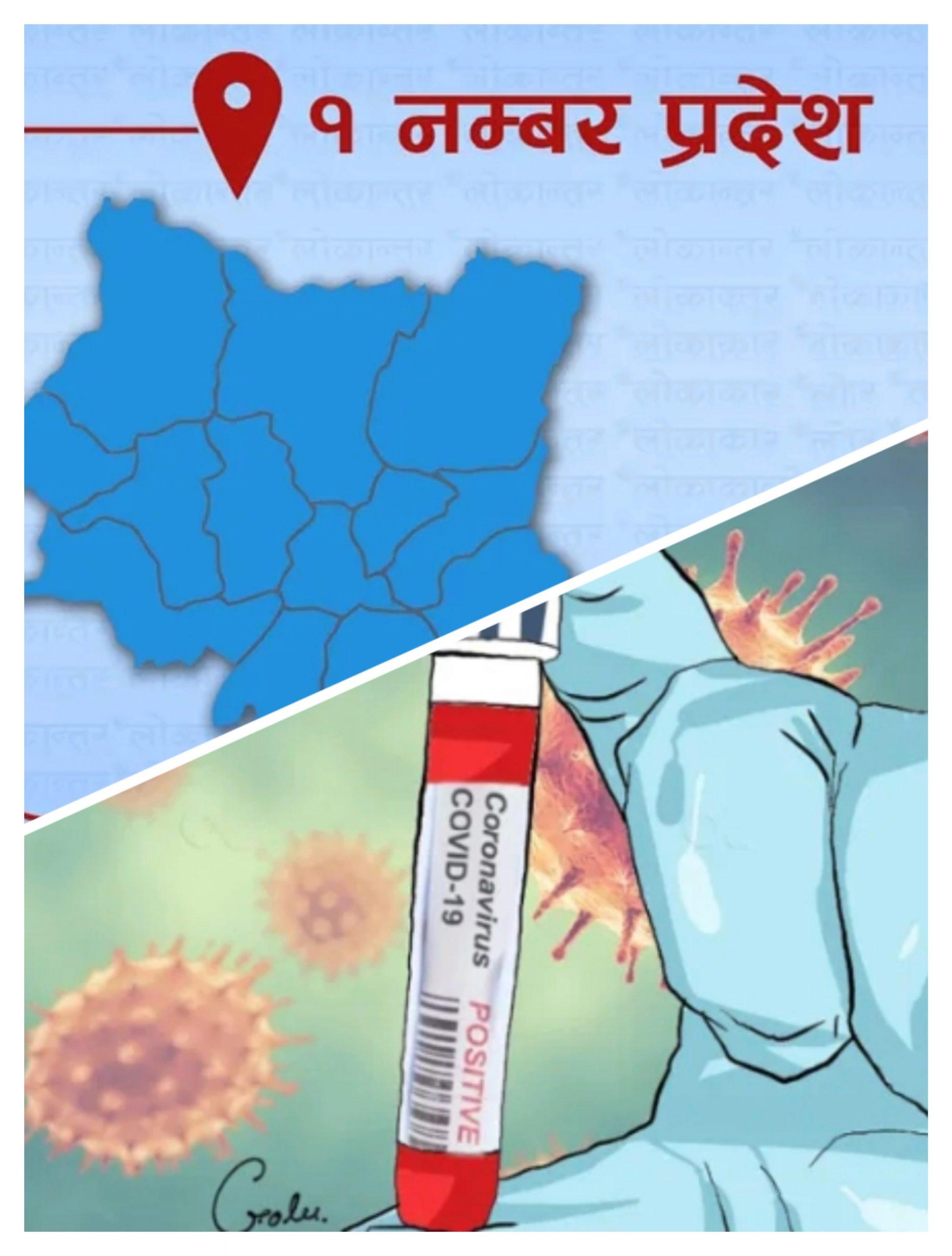प्रदेश १ मा थपिए ६३५ कोरोना संक्रमीत