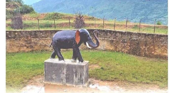 पानीबिनाकाे पाेखरीमा चार लाख खर्चिएर हात्तीकाे मूर्ति