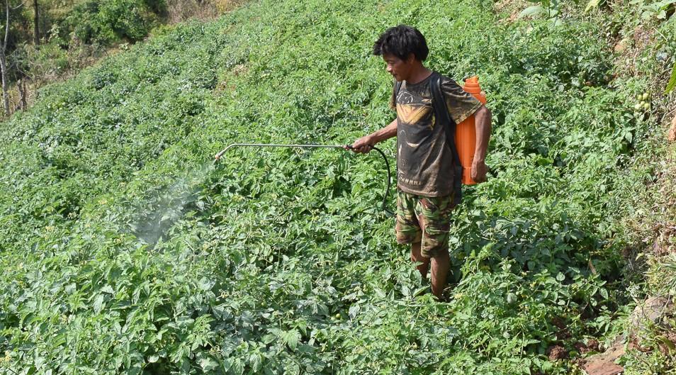 जलवायु परिवर्तनले किसानका खुट्टामा ठेस