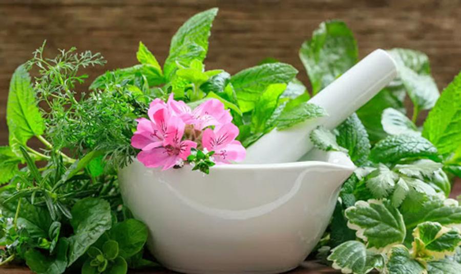 मुटुको स्वास्थ्यको लागि उपयोगी तीन प्राकृतिक उपचार